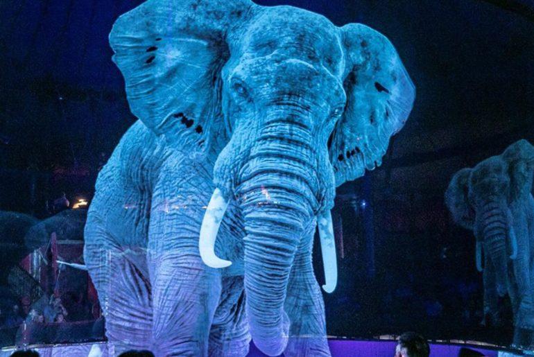 Cirque Roncalli animaux holographiques